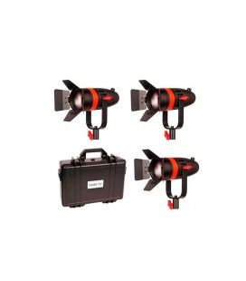 CAME-TV F-55W 3 Kit