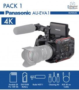 PACK 1 PANASONIC AU-EVA1